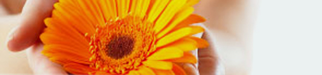 Avon Valley Floral header image