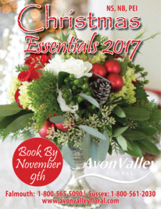 Christmas Early Bird Cover 2016 (NS) cover
