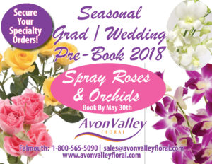 Seasonal Grad & Wedding Pre-Book